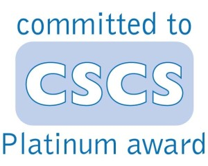committed%20cscs%20platinum%20award